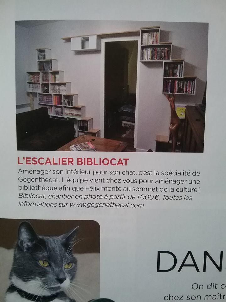 le magazine femme actuelle garde de chats paris. Black Bedroom Furniture Sets. Home Design Ideas