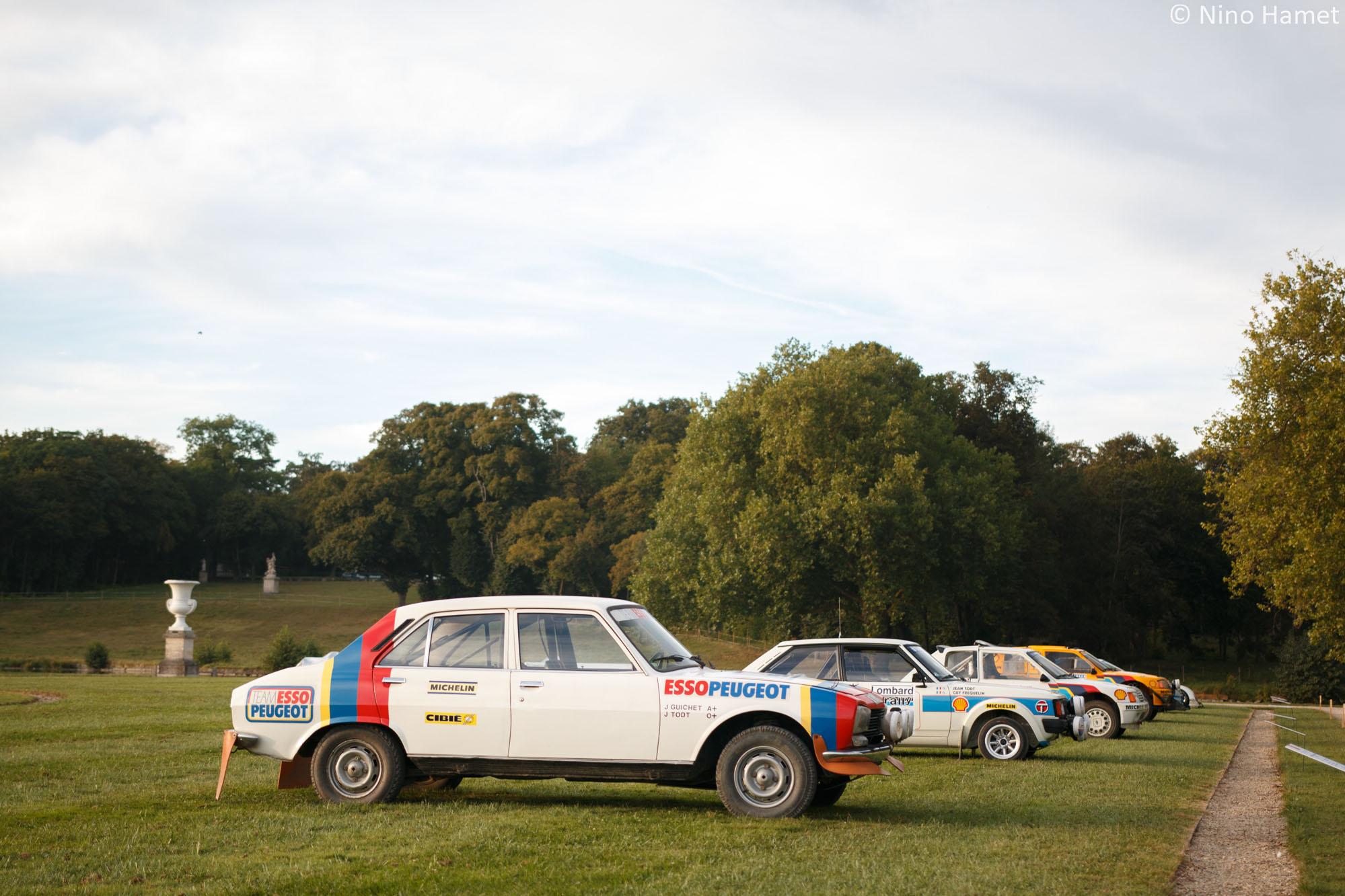 Spécial Hommage : Jean Todt – 50 années d'une carrière hors norme, premier prix : Peugeot 504 Rallye Groupe 4 1979 (M. Jean Guichet)