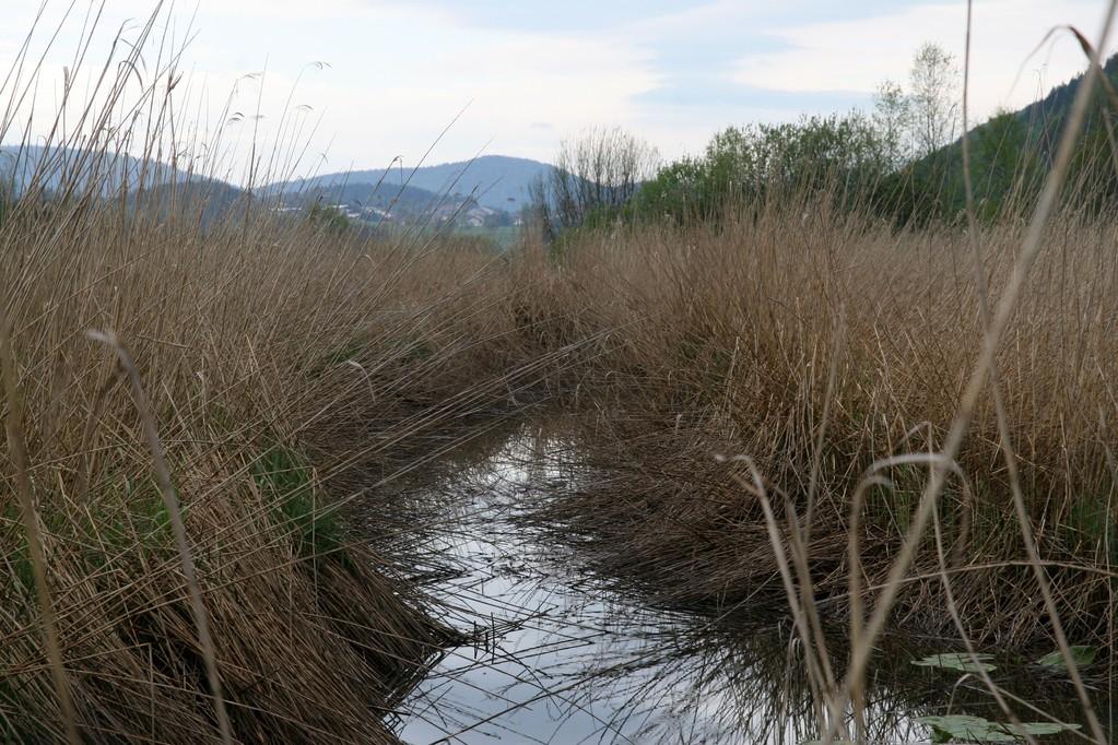 24 mai - Nettoyage du Lac des Rousses