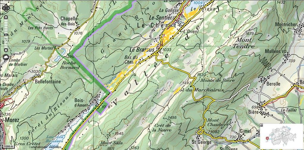 L'Orbe, côté suisse - Les bas-marrais