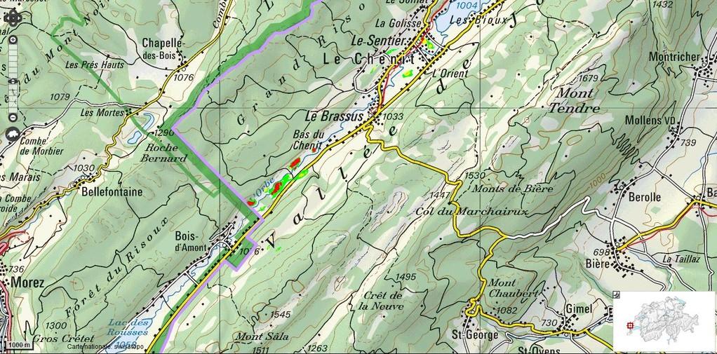 L'Orbe, côté suisse - Les hauts-marais