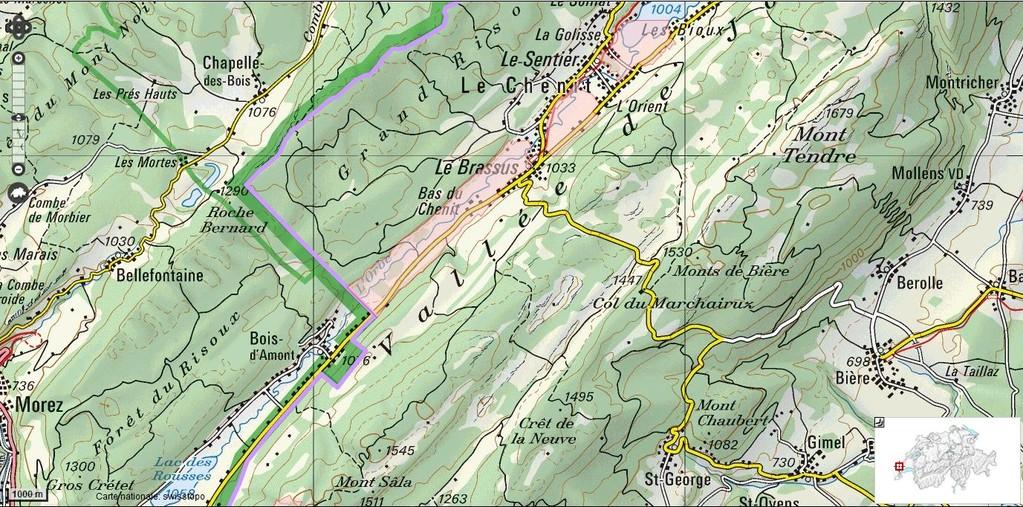 L'Orbe, côté suisse - Zones marécageuses
