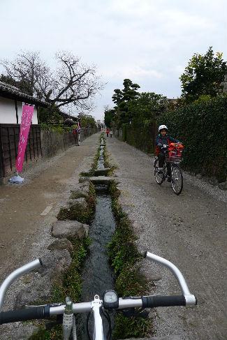 武家屋敷の通り・・・水も透き通る