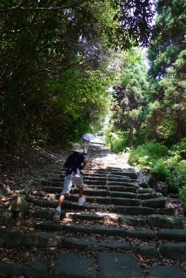 風情のある階段を・・・鍛えられます