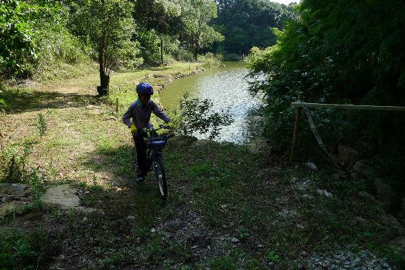 池のほとりを走り