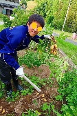 梅雨入り前に収穫祭