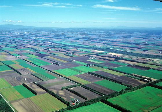 十勝平野の中央に位置する帯広市