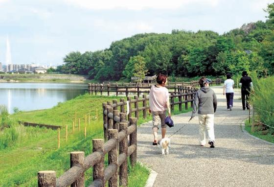 緑豊かな公園都市