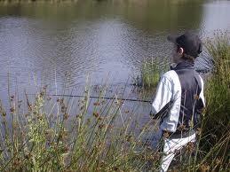Pêche à l'étang Forez loire 42