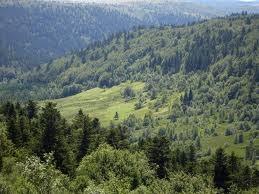 Vallée de Chorsin