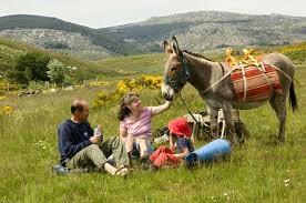 Rando ânes dans le FOREZ