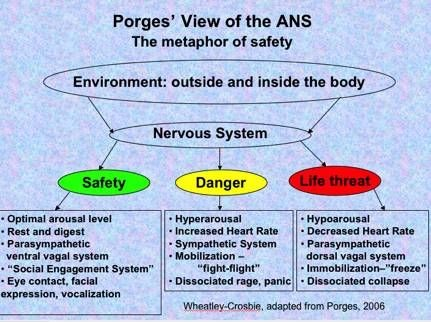 Quelle: http://attachmentdisorderhealing.com/tag/polyvagal-theory/