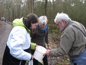 NABU-Gruppe beim Aufstellen des Krötenzauns
