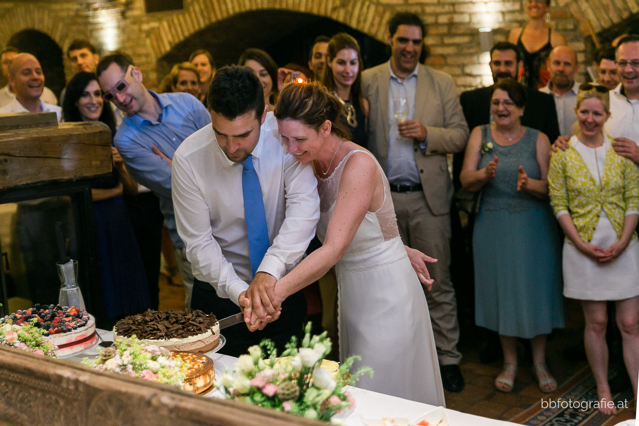 Hochzeitsfotograf, Hochzeitsfotograf Wien, Hochzeitslocation Wien, Hochzeitslocation Weingut am Reisenberg, Tortenanschnitt, Gartenhochzeit, Hochzeit mit Ausblick, b&b fotografie