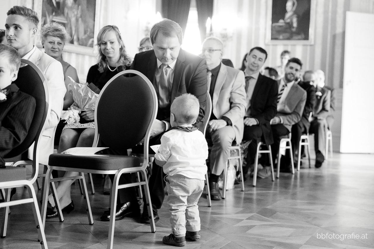 Hochzeitsfotograf, Hochzeitsfotograf Burgenland, Hochzeit Schloss Esterhazy, Hochzeit Orangerie Schloss Esterhazy, Hochzeitslocation Burgenland, Hochzeitsgesellschaft, b&b fotografie