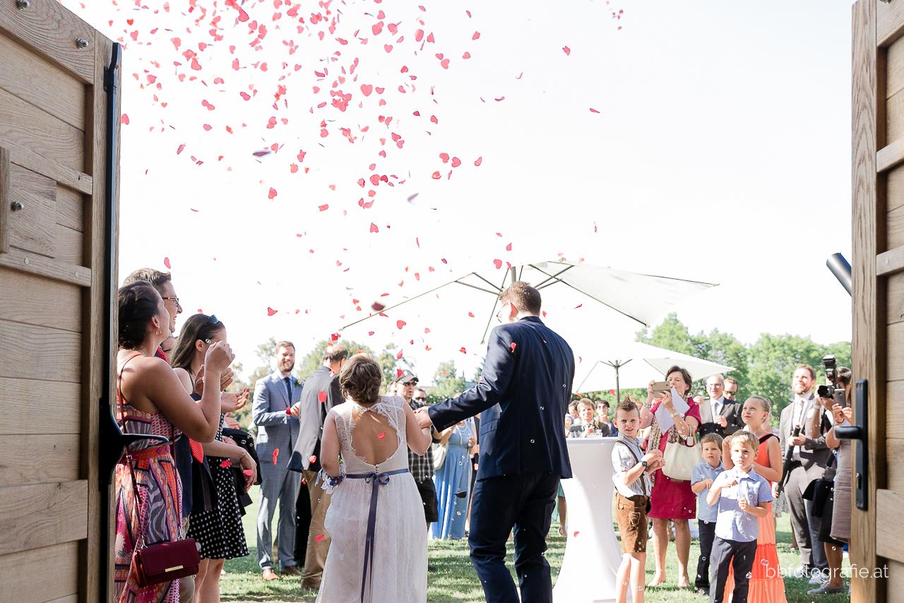 Hochzeitsfotograf, Hochzeitsfotograf Niederösterreich, Hochzeitslocation Niederösterreich, Brautpaar, Hochzeitsgesellschaft, Hochzeitslocation Zieselrot in Schwechat, Hochzeit Kellergewölbe, b&b fotografie