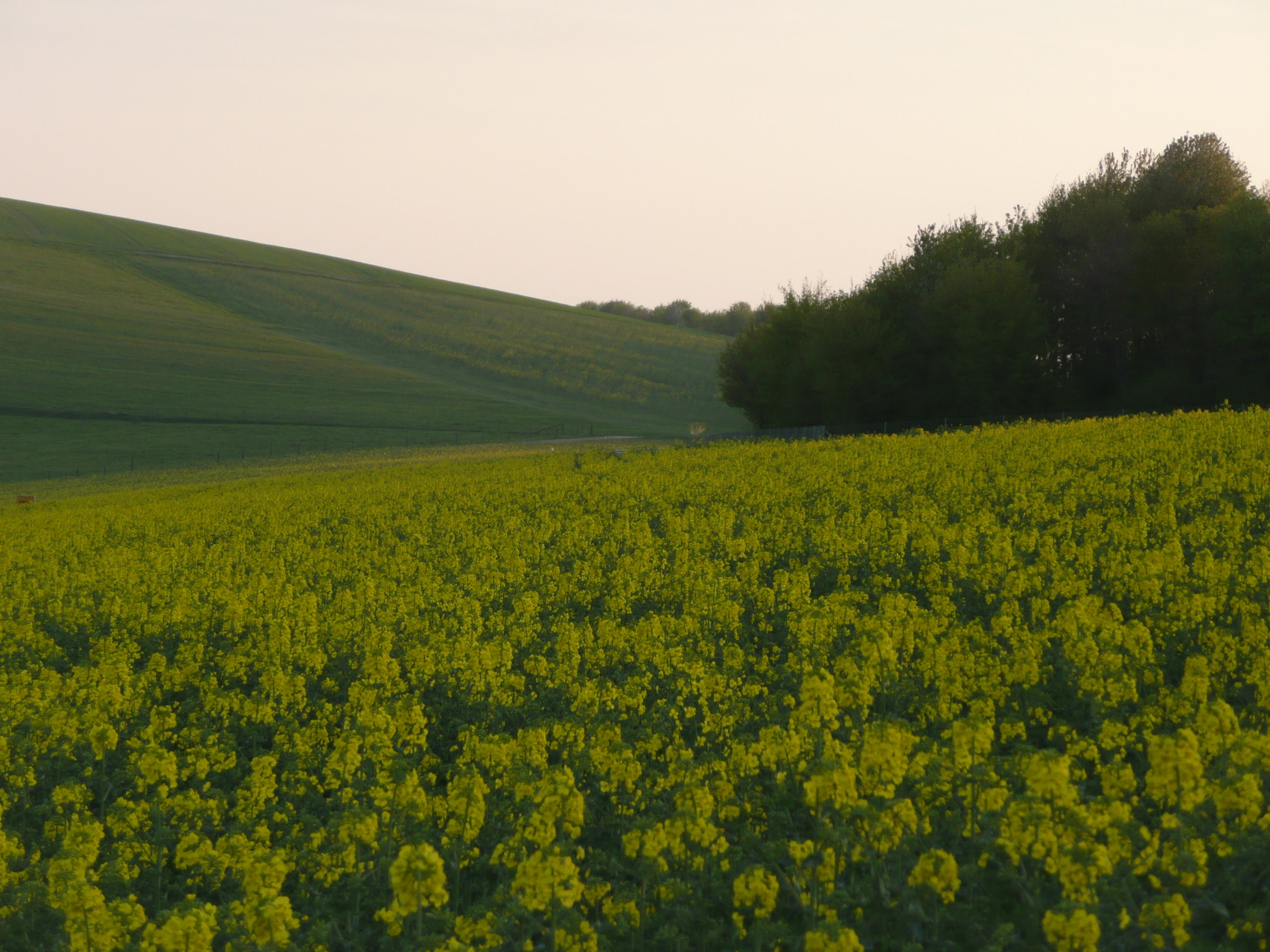 Landschaft rund um Korlingen