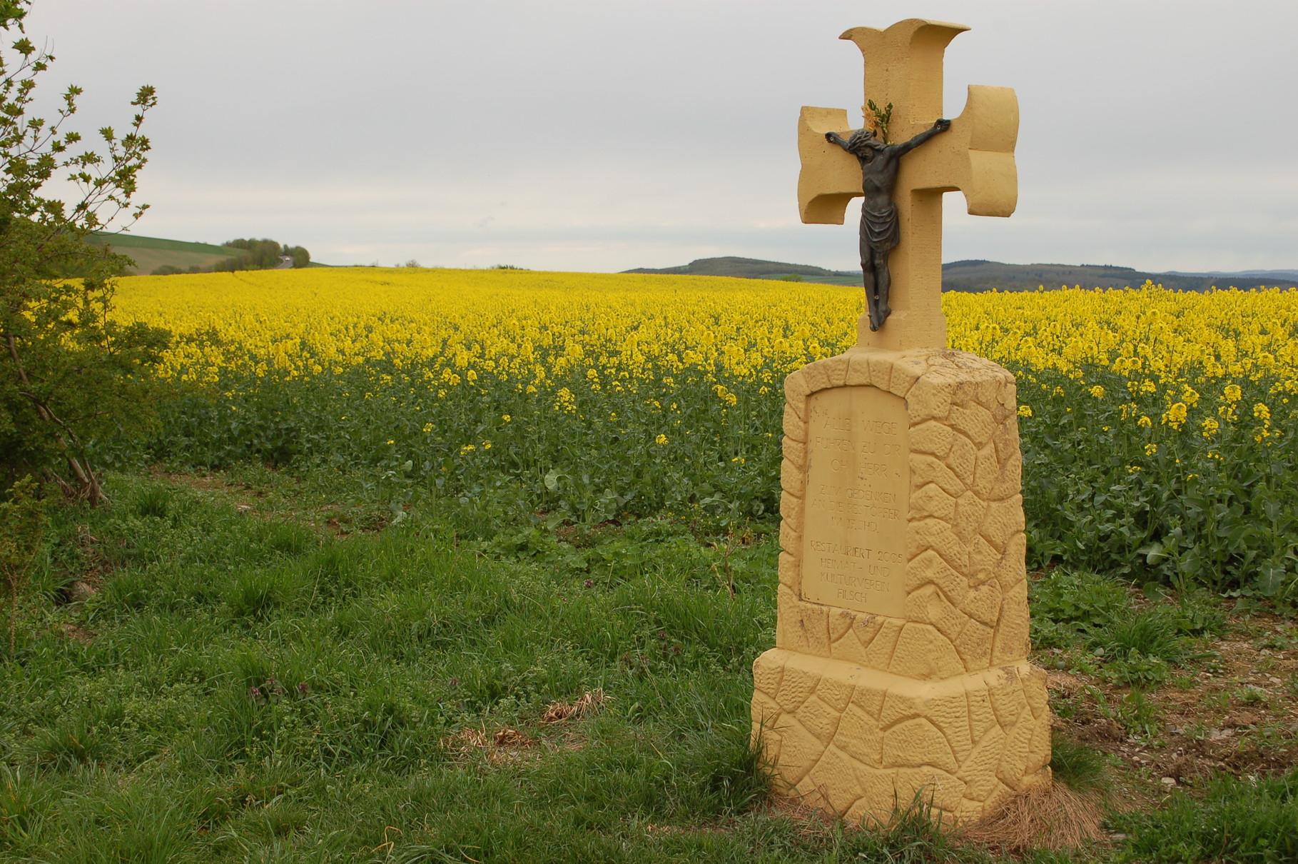 Pestkreuz der Gemeinde Filsch neben einem Rapsfeld auf der Korlinger Höhe