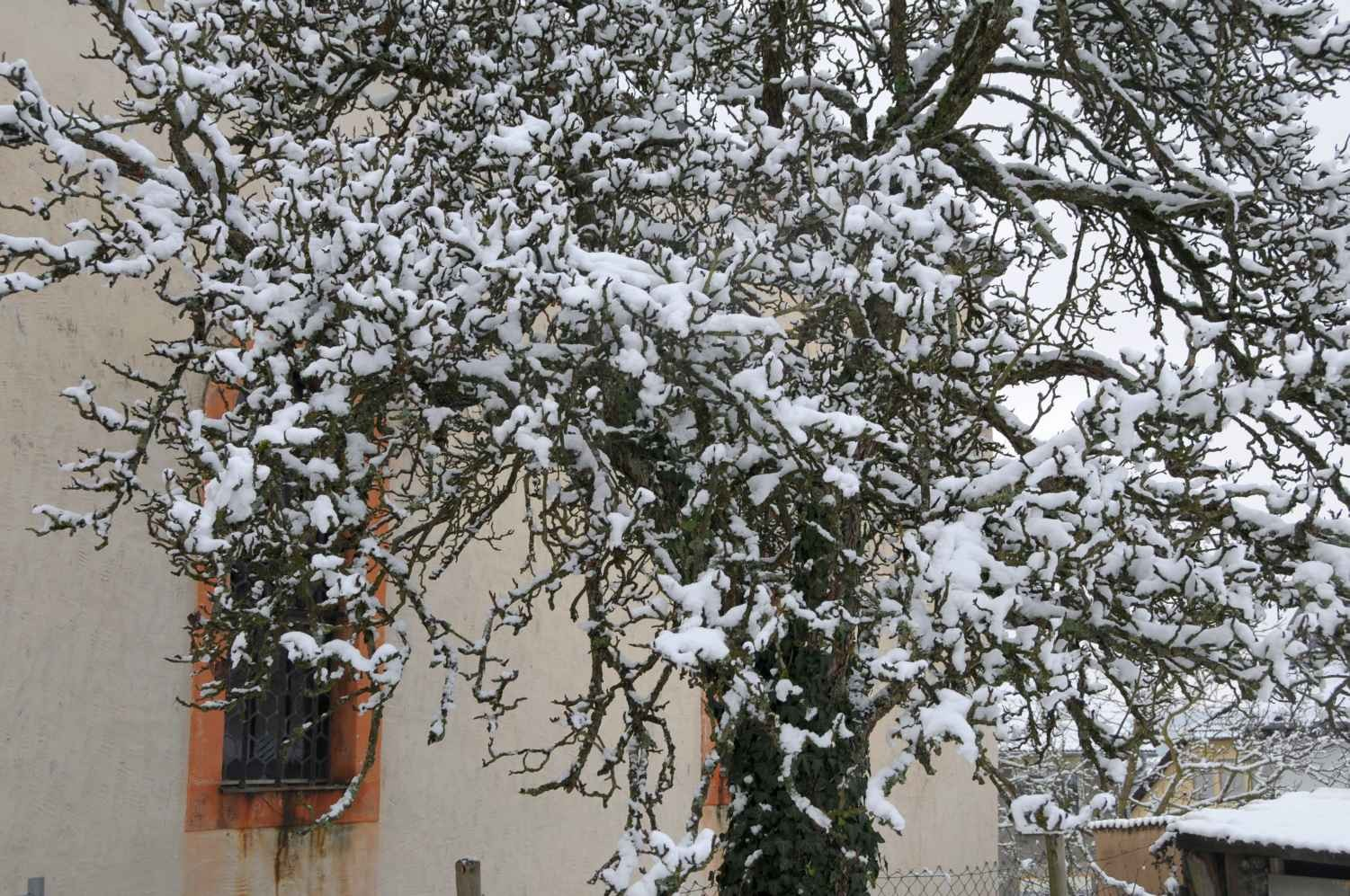 Winter in Korlingen, Februar 2015