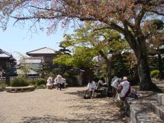 帝釈寺境内で昼食