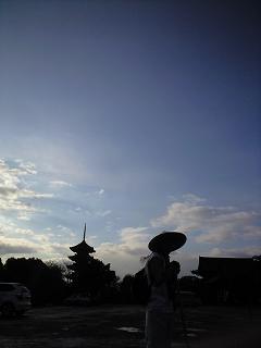 東寺の午前9時(撮影 片山さん)