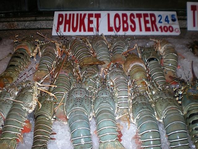 Der berühmte Phuket Lobster ist eine Delikatesse und ist gegenüber den europäischen Preisen für wenig Geld zu geniessen