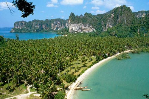 Phi Phi Island, ein Traum in der Andamansea bequem von Phuket aus zu erreichen