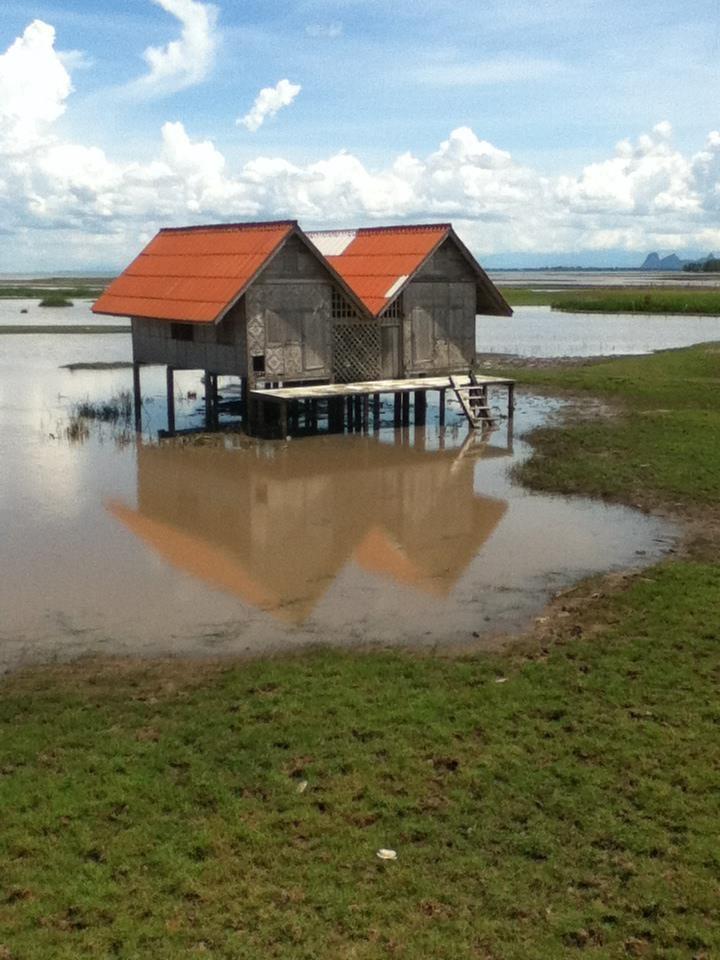 Der See von Phattalung ist über 100Km lang und wartet mit einer einmaligen Landschaft auf
