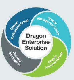 Dragon Group voor netwerken
