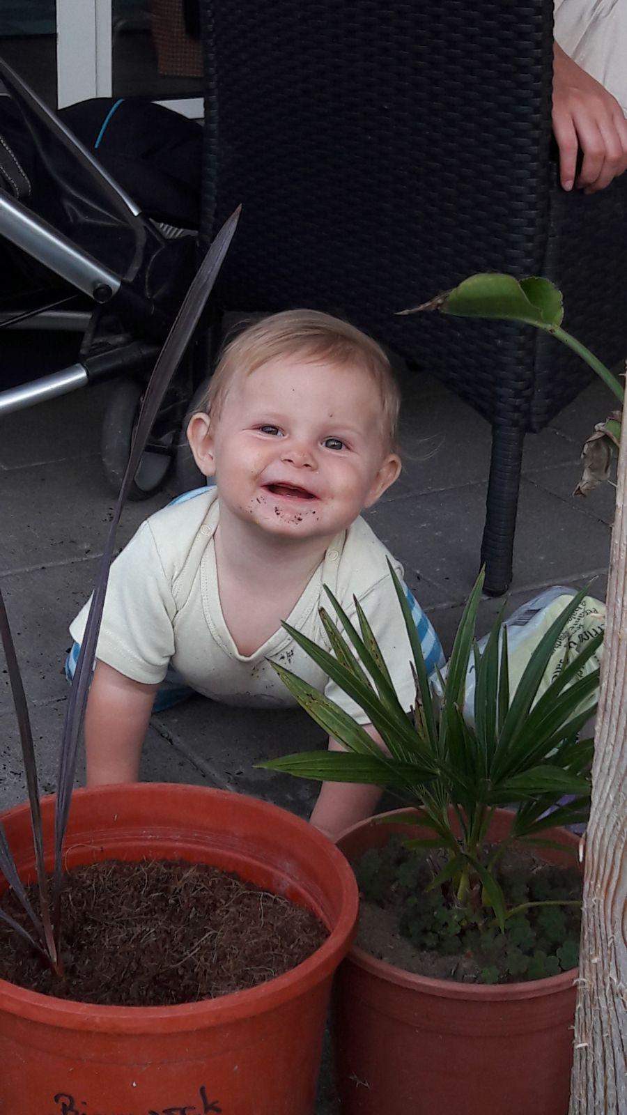 In einer Gärtnerei