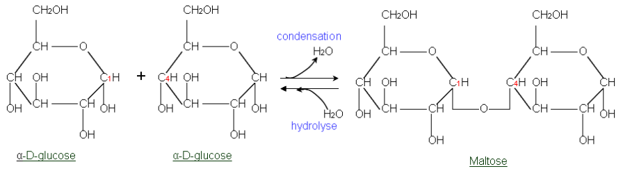 Glycosidic Bond Formation Withcarbon