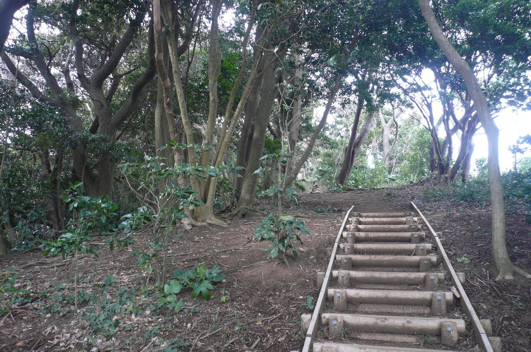 歩きやすい階段