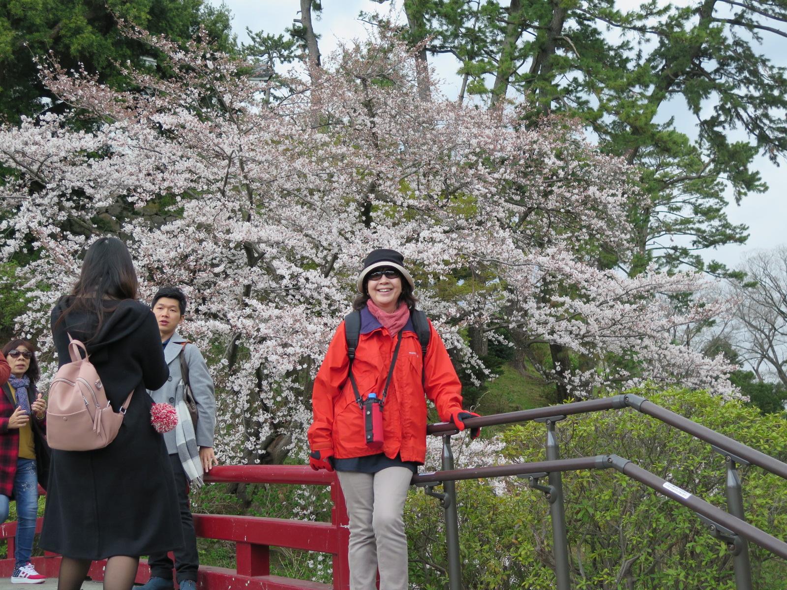 🌸桜🌸&ナイス2ショット!!