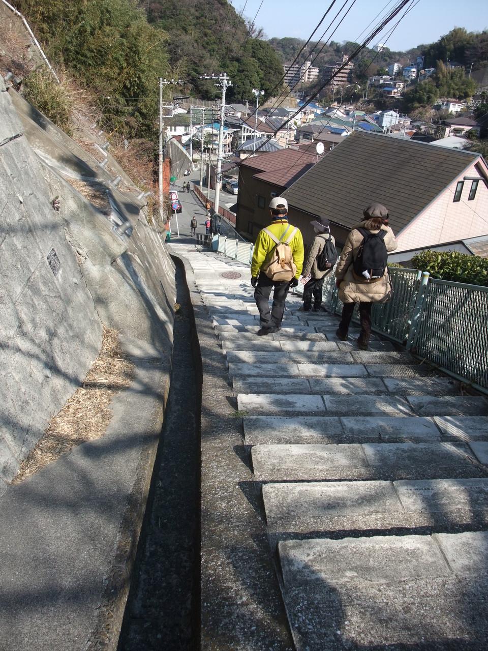 塚山公園から逸見に下る!