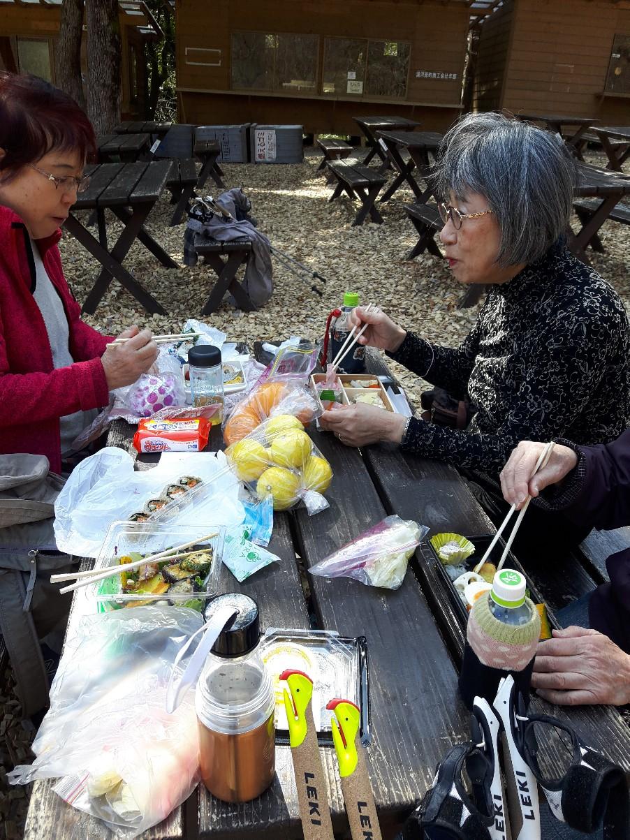ここはお弁当を持ってのピクニックに最適