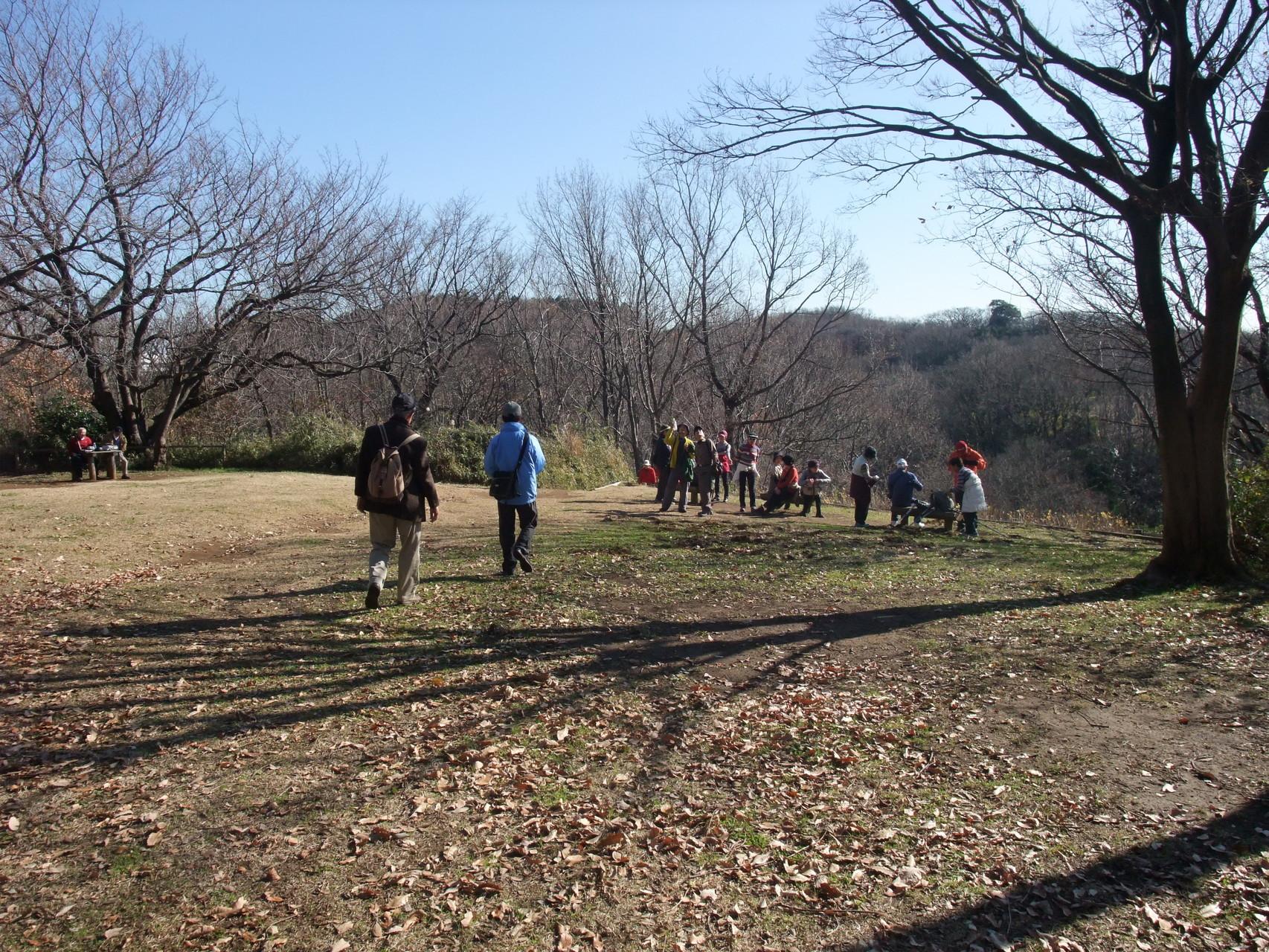 舞岡公園に至る、舞岡ふるさと村、ふるさとの森を散策