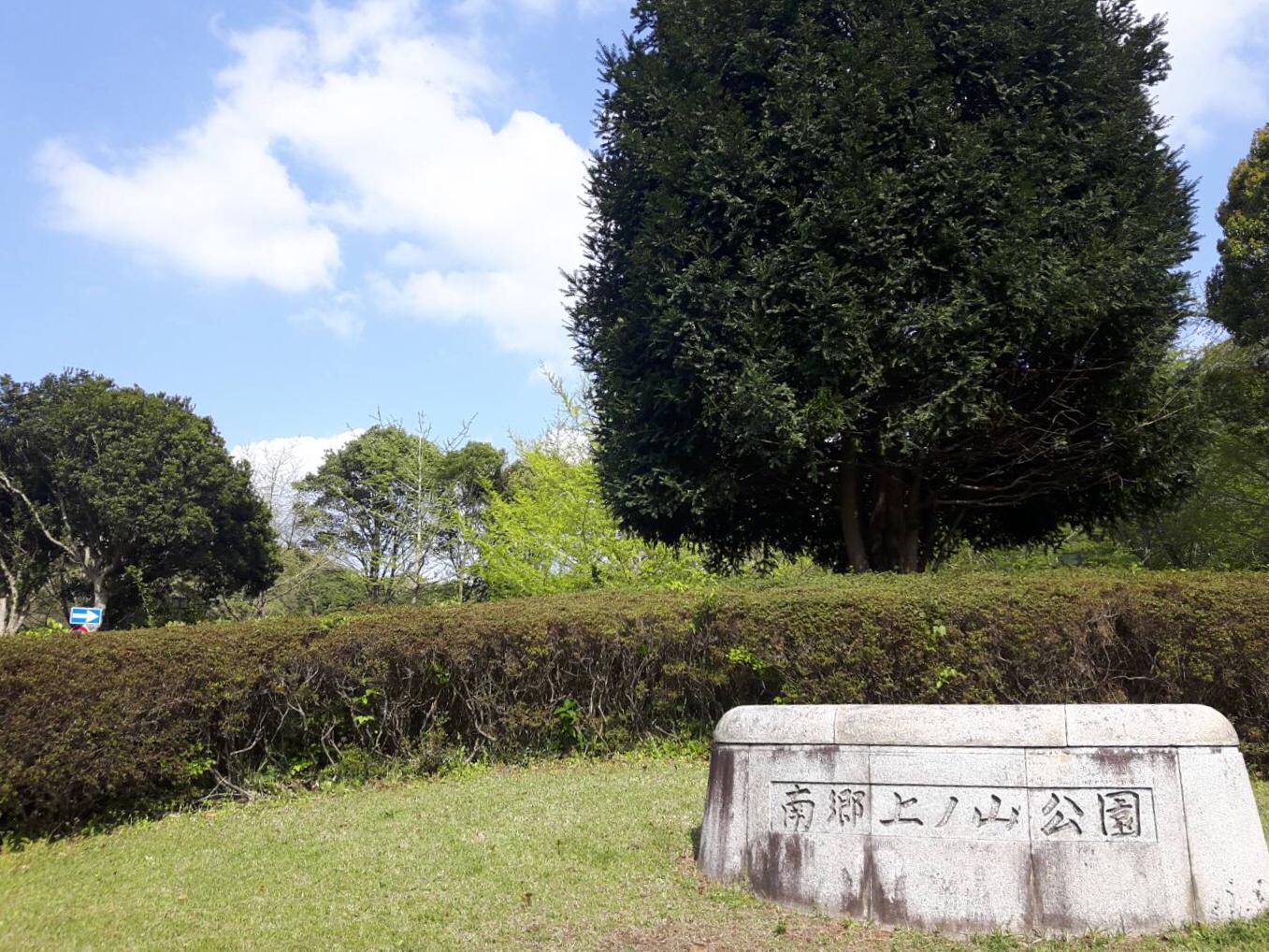 美しい芝と木々の緑が広がる