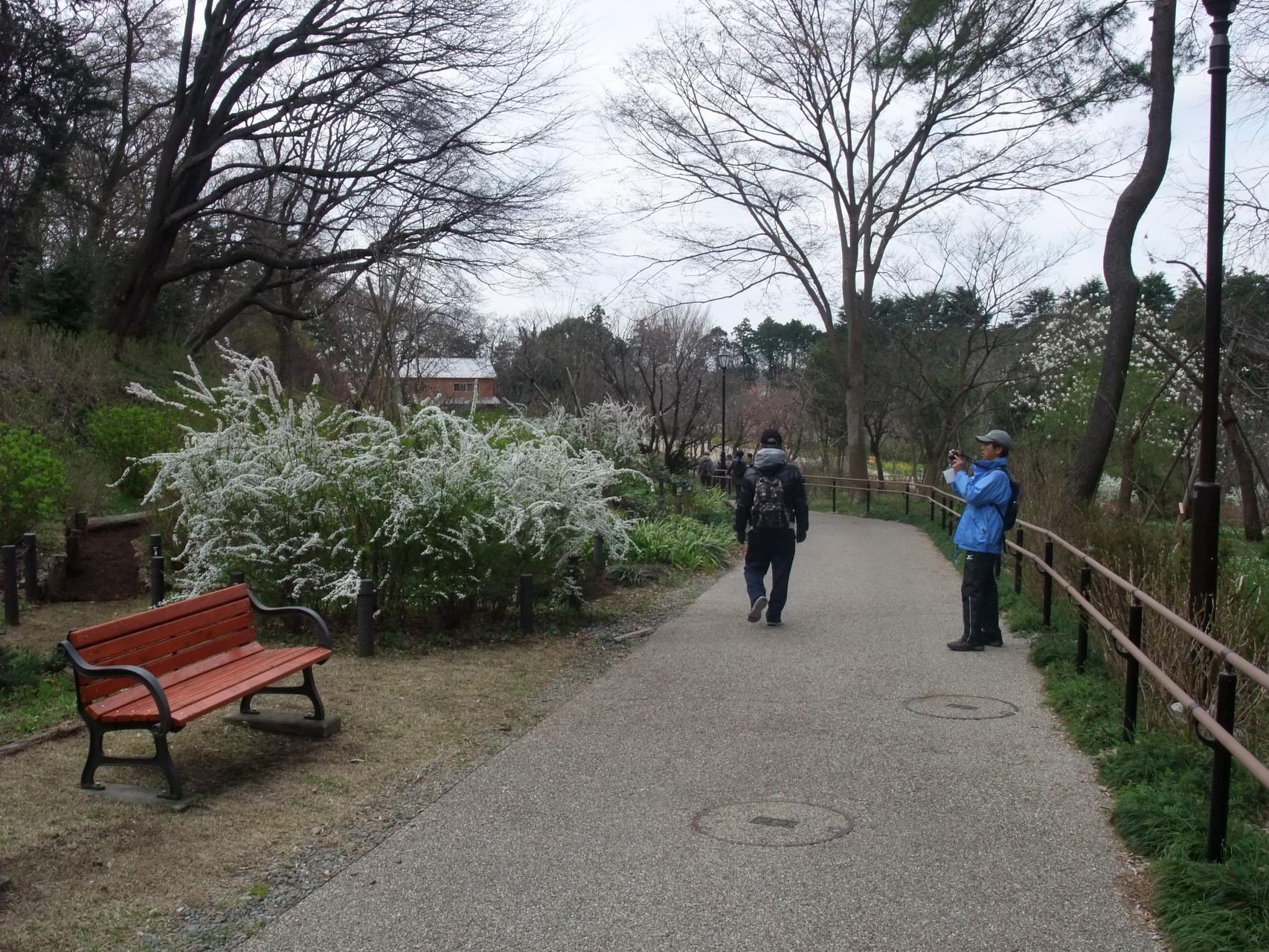俣野別邸庭園を散策