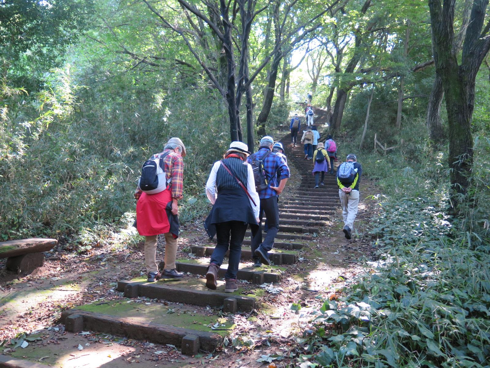 坂と階段がばら苑まで続く