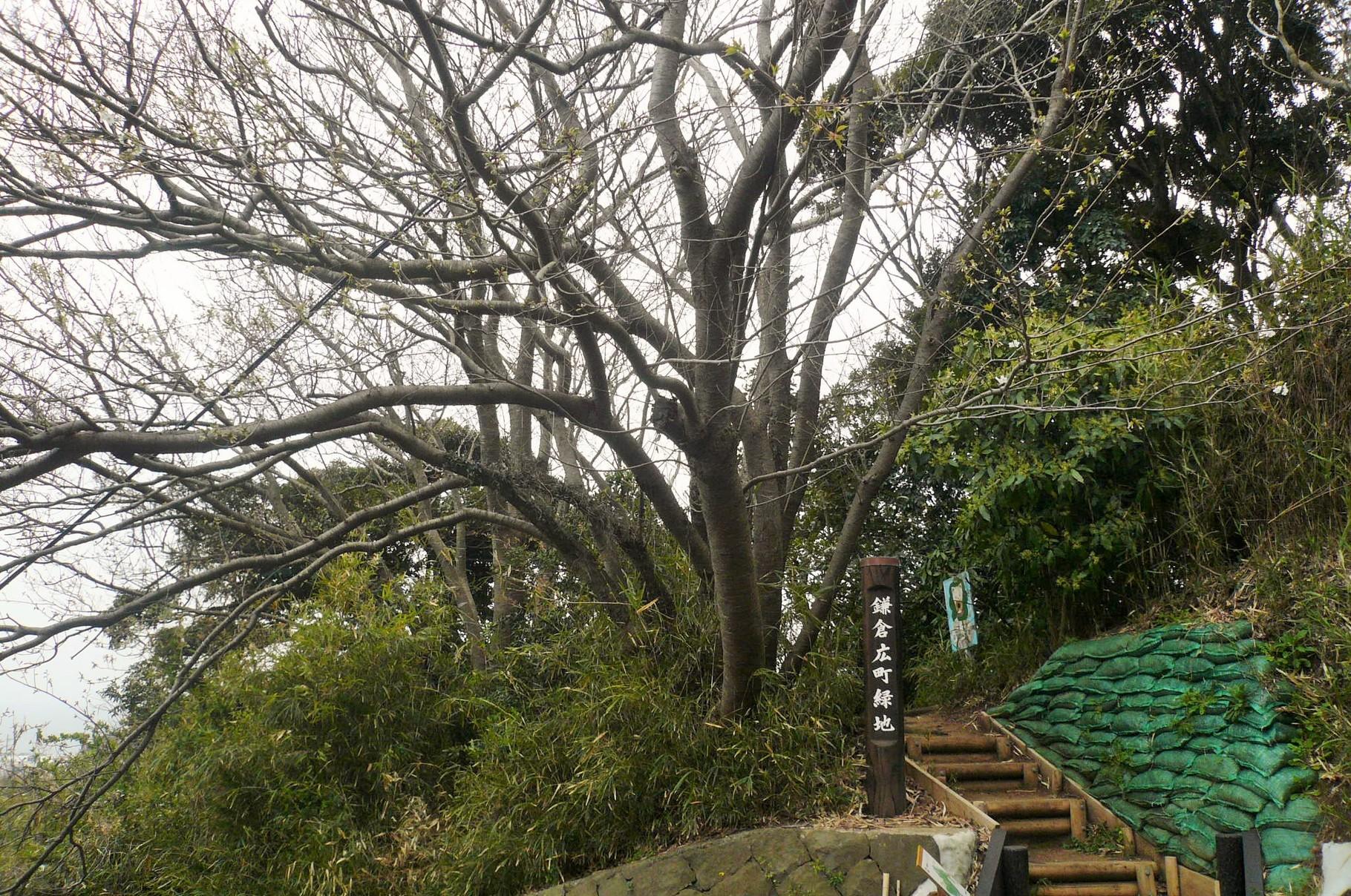 鎌倉山側からの入り口