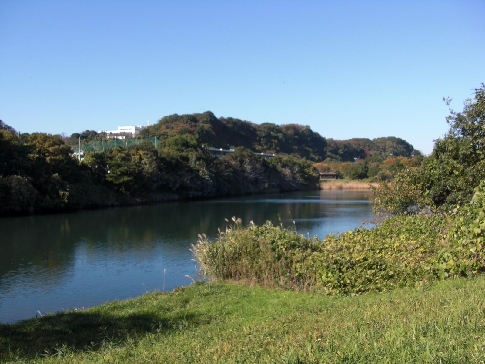 長浜野鳥観察園