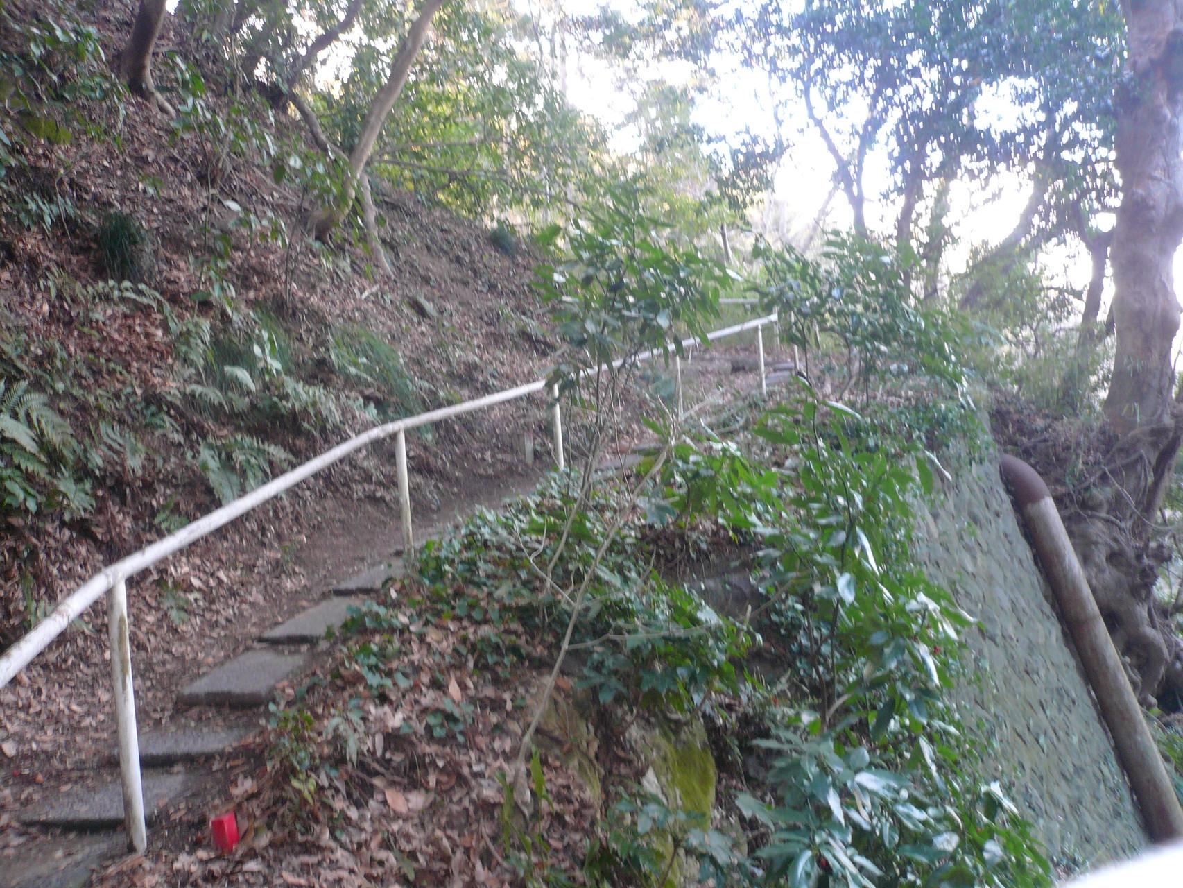 鎌倉山への登り道