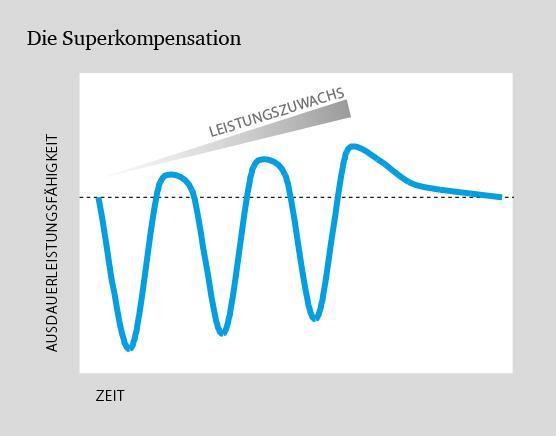 Ermüdungsbruch, Superkompensationseffekt – Dr. Matthias Marquardt