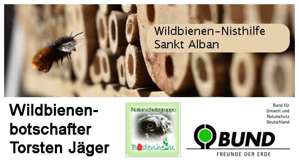 Wildbienen-Nisthilfe St. Alban