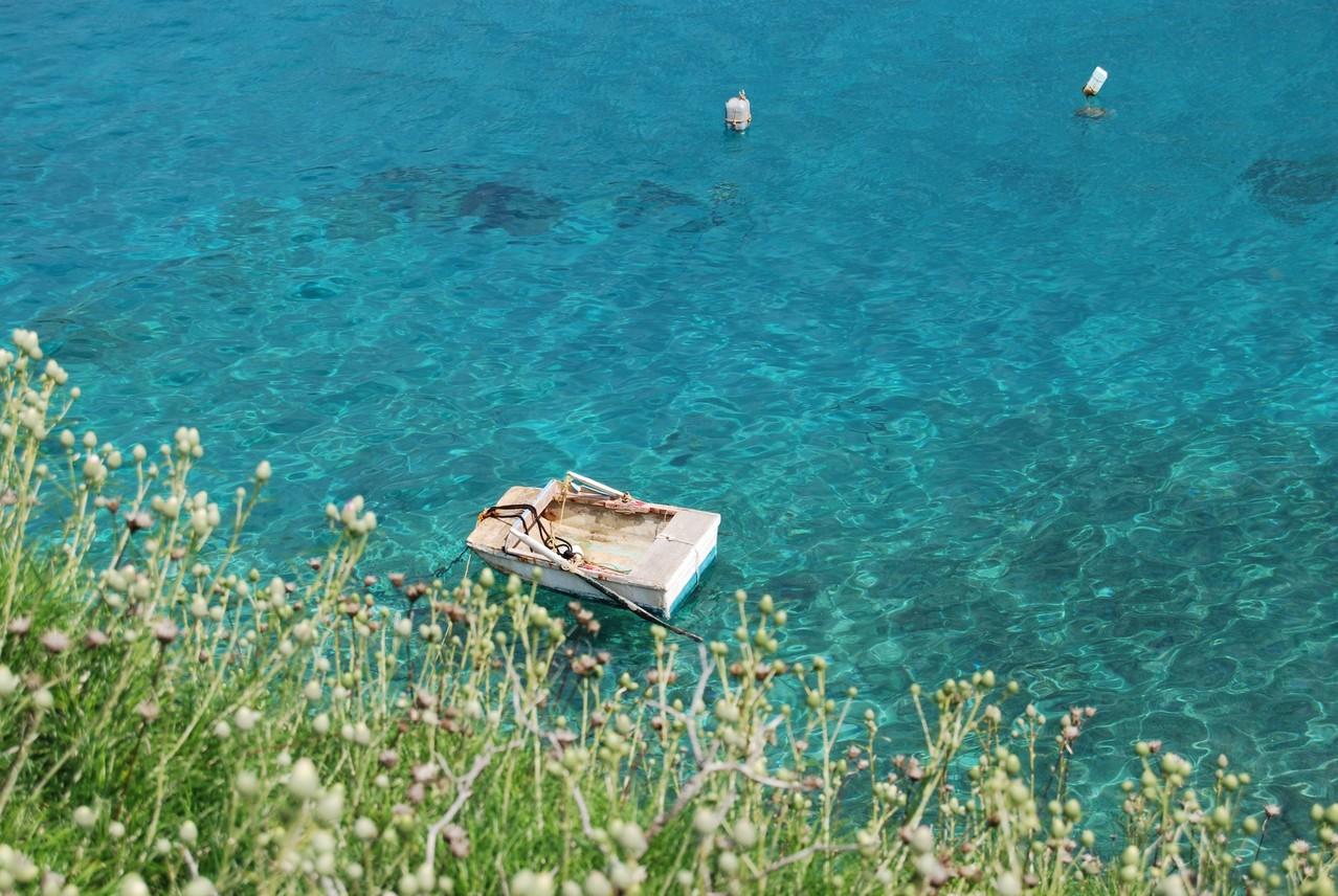 Das niedlichste Ruderboot der Welt