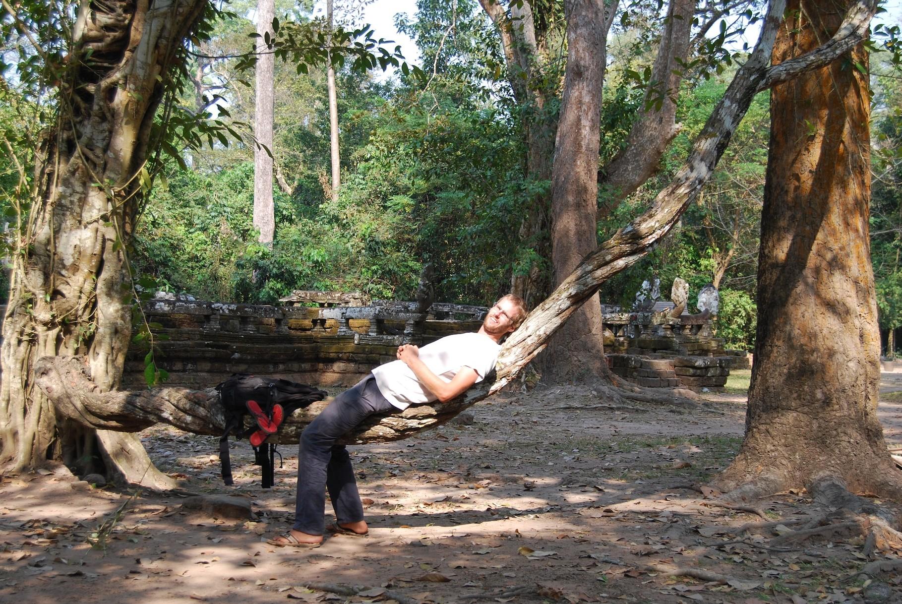 Entspannung im Baum