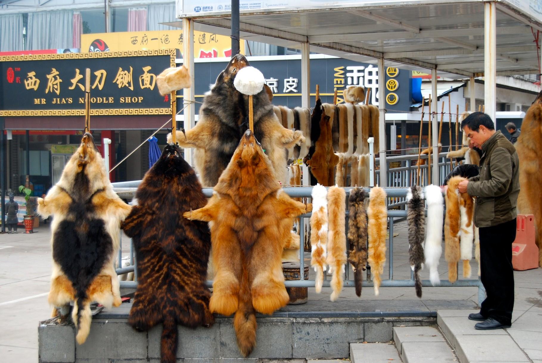 Hunde- und Katzenfelle zu verkaufen!