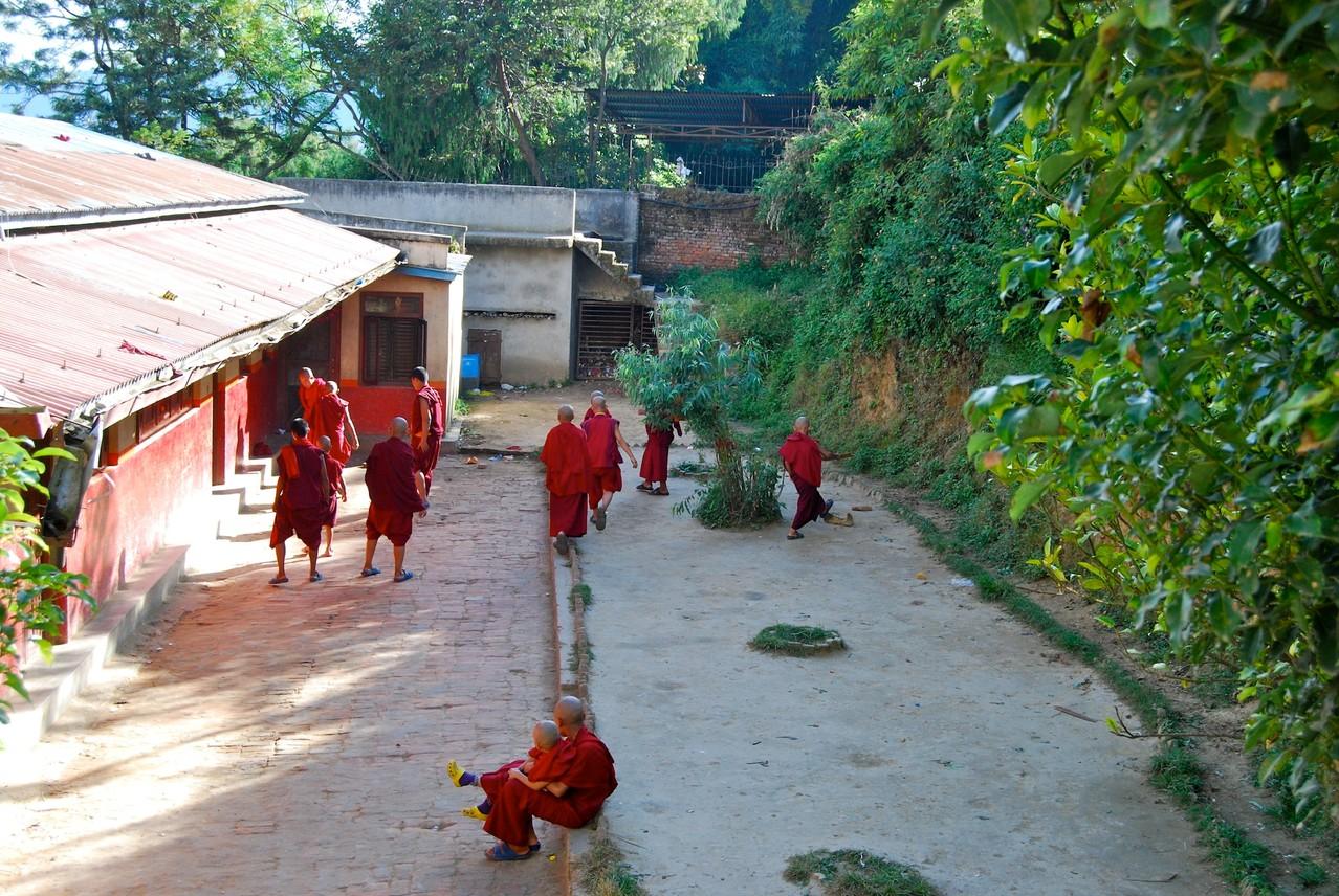 Mönche unter sich