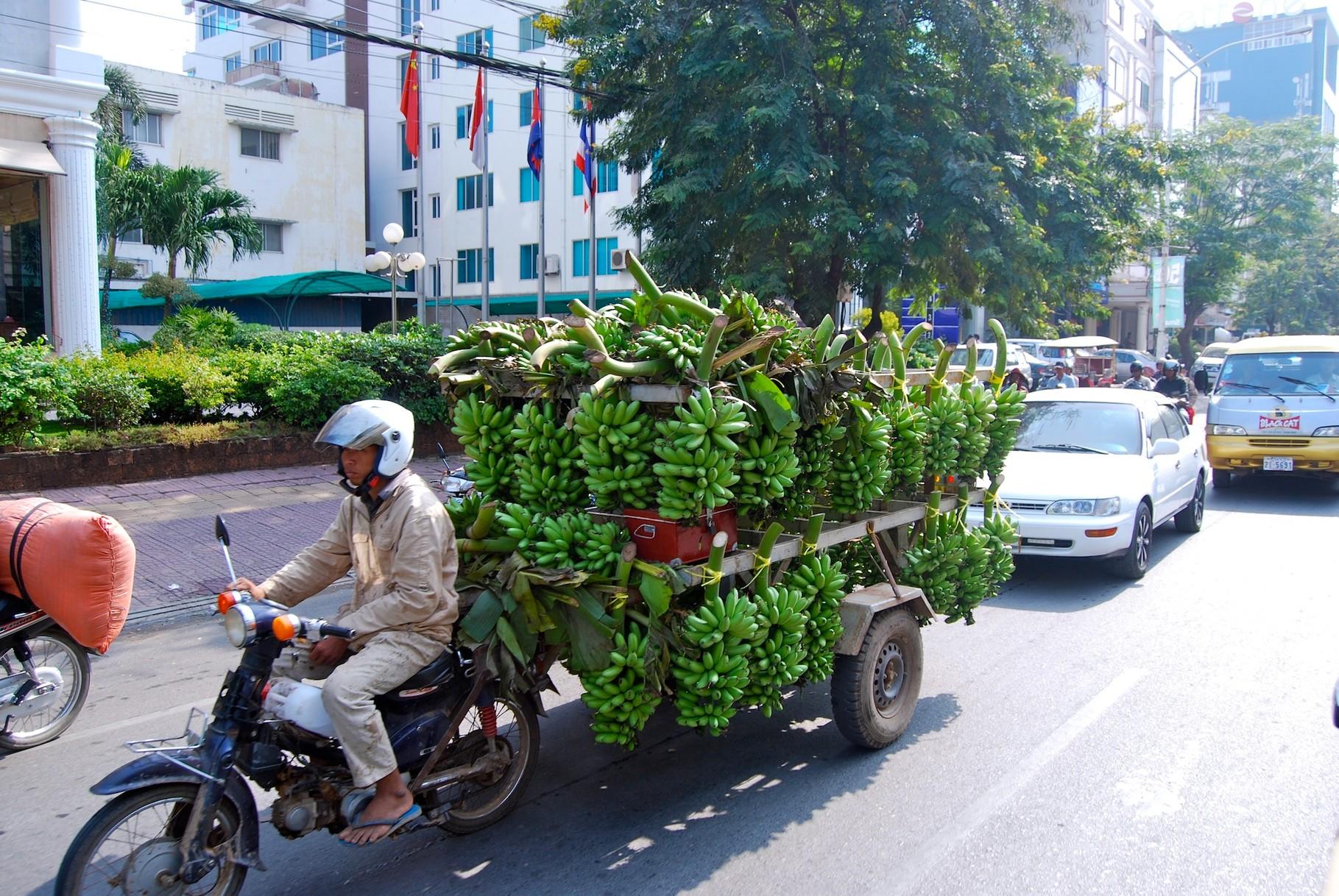 Wieviele Bananen kann man mit einem Moped liefern?