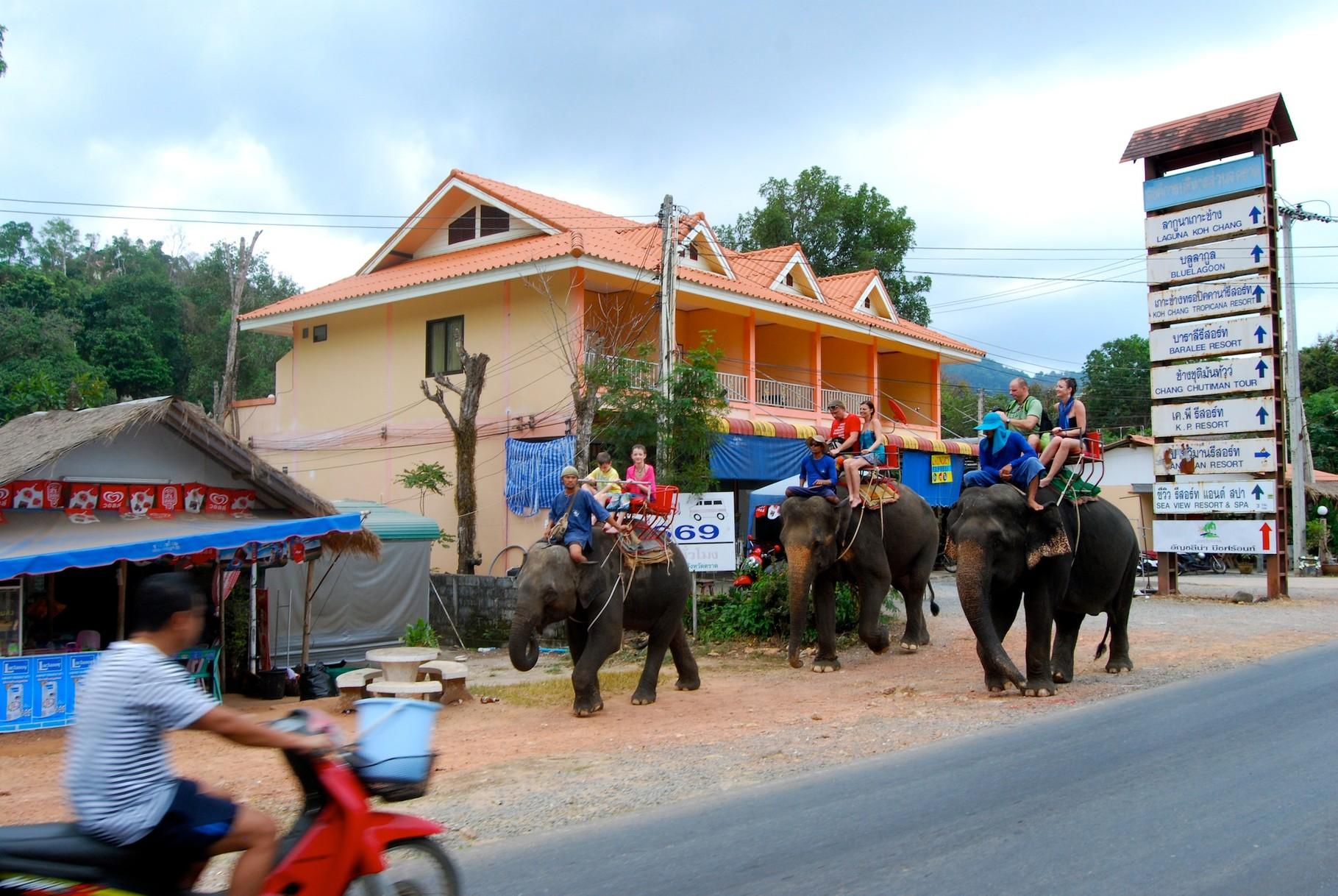 """Deshalb heißt die Insel Koh Chang (= """"Elefanten-Insel"""")"""